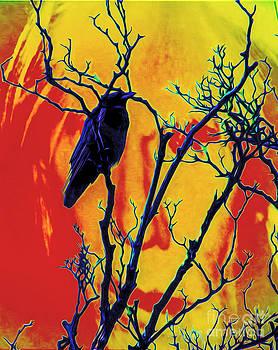 Algirdas Lukas - Crow in Andy Warhols Background
