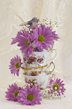 Sandra Foster - Tea Cups And Daisies