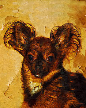 Teacup Chihuahua by Margie Middleton