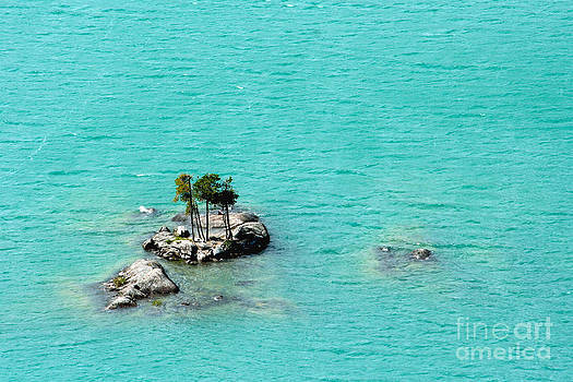 Teal Island by Denise Lilly