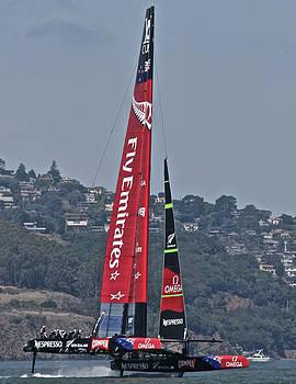 Steven Lapkin - Team New Zealand