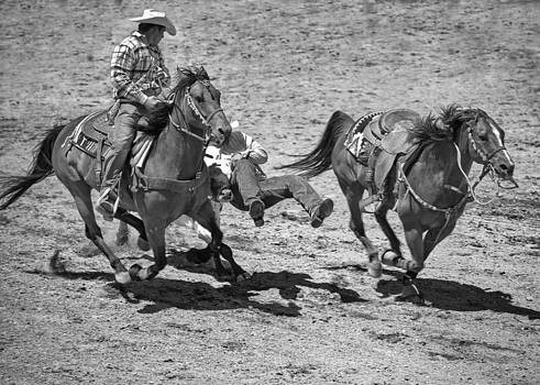 Team Roping by Dianne Arrigoni