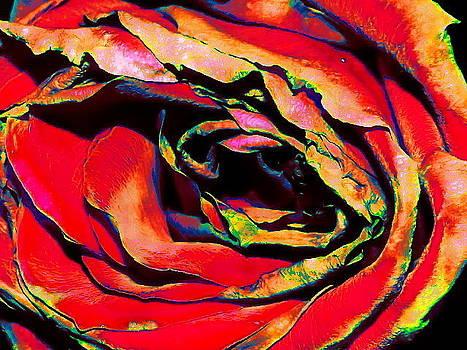 Technicolor by Maideline  Sanchez
