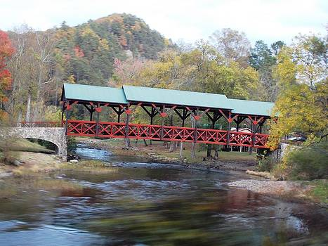 Tellico Bridge in Fall by Regina McLeroy