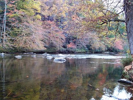 Tellico River in Fall by Regina McLeroy