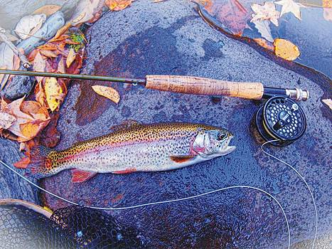 Joe Duket - Tellico River Rainbow