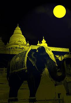 Bliss Of Art - Temple Elephant