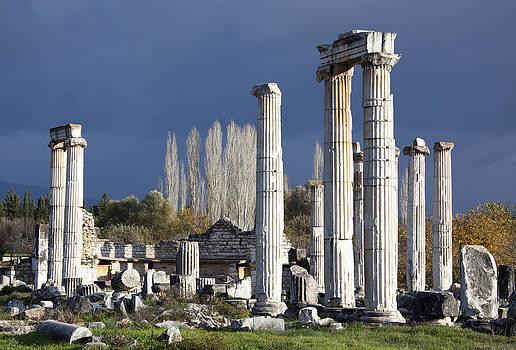 Ramunas Bruzas - Temple of Aphrodite