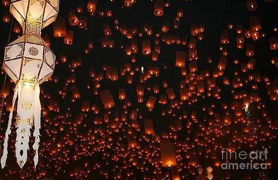 Ten Thousand Lantern Launch by Nola Lee Kelsey