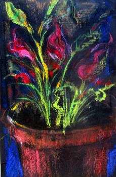 Teracotta Pot With Flowers by Josie Taglienti