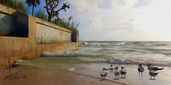 Terns at the Seawall by Forest Stiltner