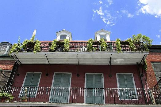 Terrific Terraces by Dana Doyle