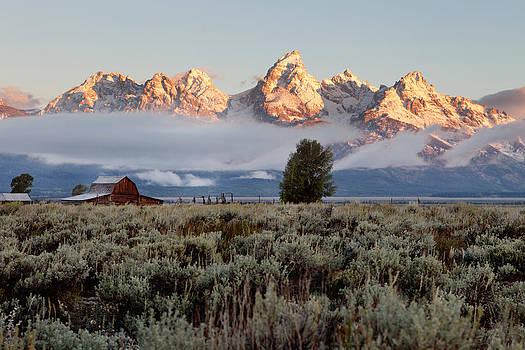 Teton Morning by Brian Brown