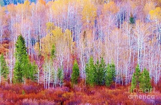 Harriet Peck Taylor - Tetons Autumn