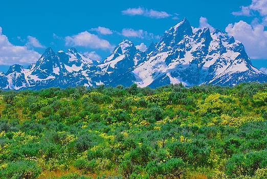 Tetons From River Road by Larry Bodinson