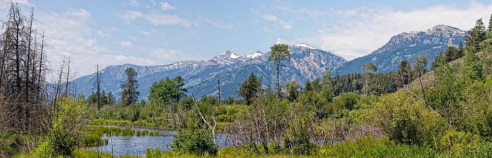 Tetons In the Distance Panoramic View by Alina Marin-Bliach