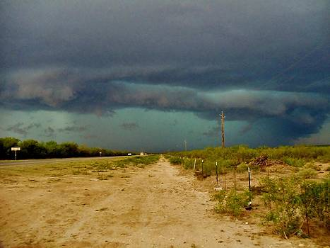 Texas Blue Thunder by Ed Sweeney