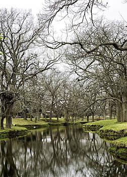 Bonnie Davidson - Texas Brook
