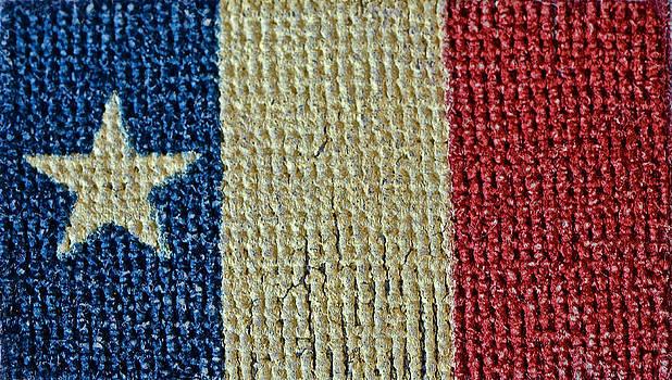 Bill Owen - Texas First Lone Star Dodson