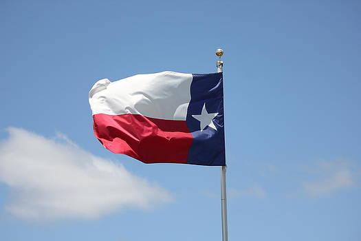 Texas Flag by Charlotte Craig