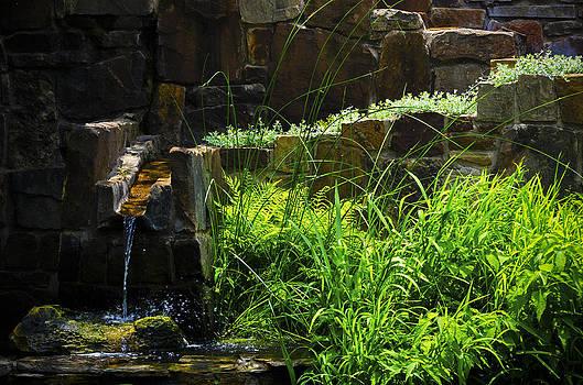 Texas Garden Fountain by Greg Reed