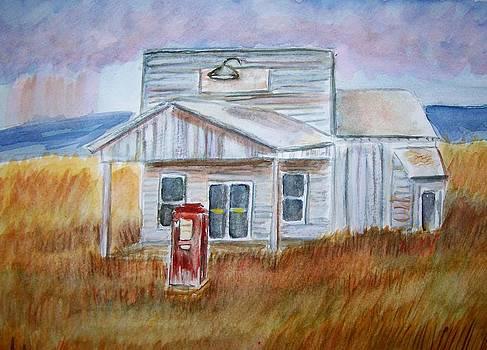Texas Grassland by Belinda Lawson