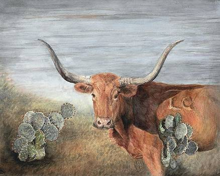 Texas Longhorn and Cactus by Dana Spring Parish