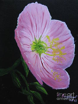 Texas Primrose by Betty and Kathy Engdorf and Bosarge