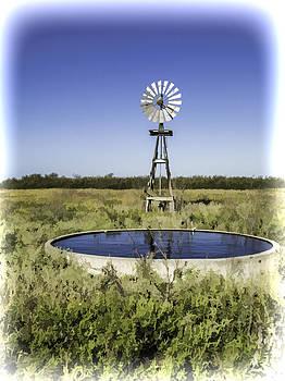 Bonnie Davidson - Texas Windmill