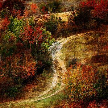 Textured fall by Svetoslav Sokolov