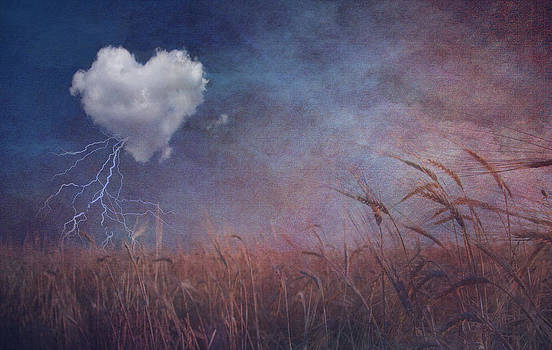 Textured heart cloud and open field by Bruce Rolff