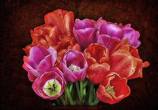Textured Tulips by Ray Still