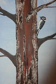 Textured Woodpecker by Donna Jeanne  Carver