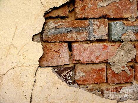Textures of Disrepair by Diane Miller