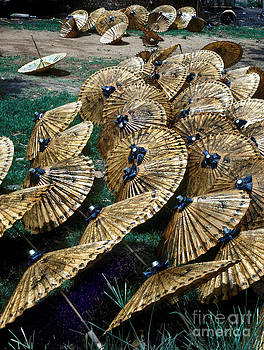 Thai Umbrellas by Eva Kato