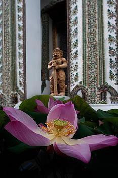 Thai's lily by Mikhail Pankov