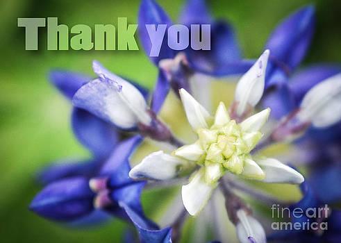 Cheryl McClure - Thank You