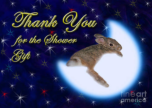 Jeanette K - Thank You for the Shower Gift Bunny Rabbit