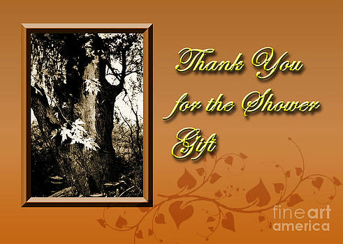 Jeanette K - Thank You for the Shower Gift Willow Tree