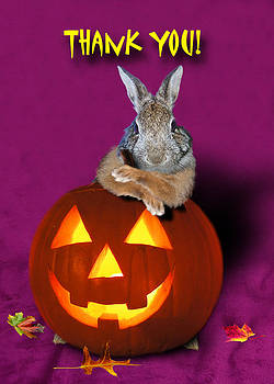 Jeanette K - Thank You Halloween Bunny Rabbit