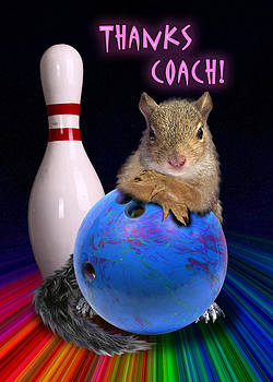 Jeanette K - Thanks Coach Squirrel