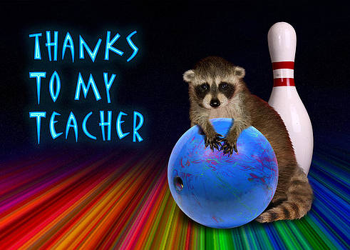 Jeanette K - Thanks To My Teacher Raccoon