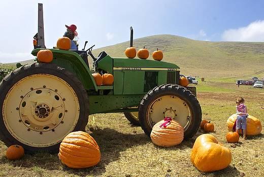 Venetia Featherstone-Witty - Thanksgiving Harvest Halloween