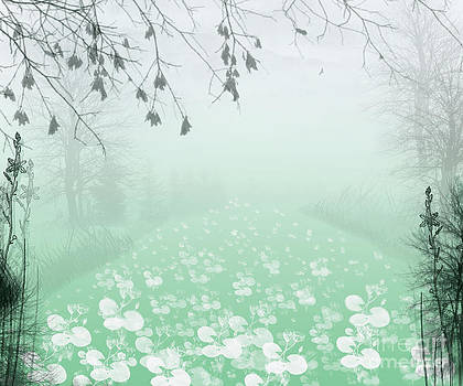 That Misty Morning by Trilby Cole