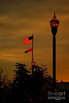 That star-spangled banner yet wave by   Joe Beasley