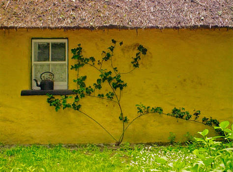 Thatched Cottage by Valerie Longo