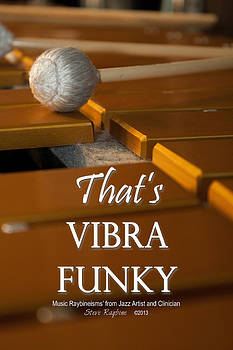 Thats Vibra Funky by Steve  Raybine