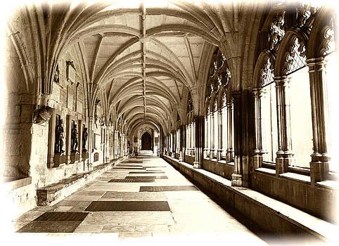 The Abbey by Karen Varnas