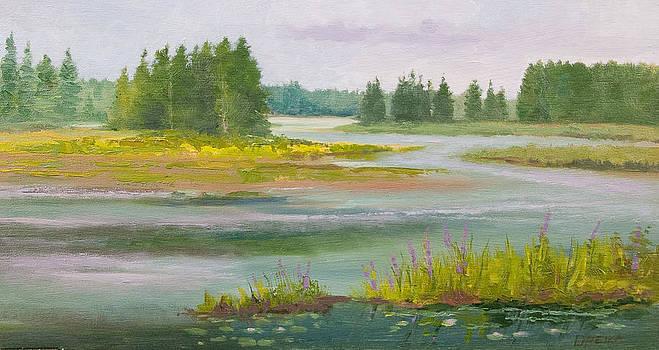 The Adirondacks Madawaska Pond by Karen Lipeika