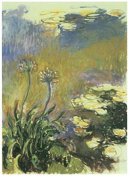 Claude Monet - The Agapanthus